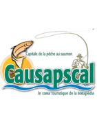 Causapscal